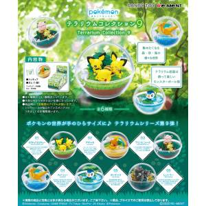 Pokemon Terrarium Collection 9 6 Pack BOX [Goods]