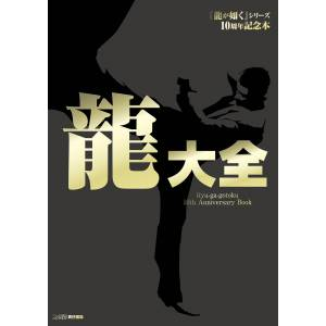 Ryu Ga Gotoku 10th Anniversary Book [Artbook]