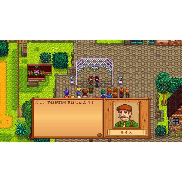 Stardew Valley Collector's Edition (Multi Language) [Switch] Maximize. Previous. Next